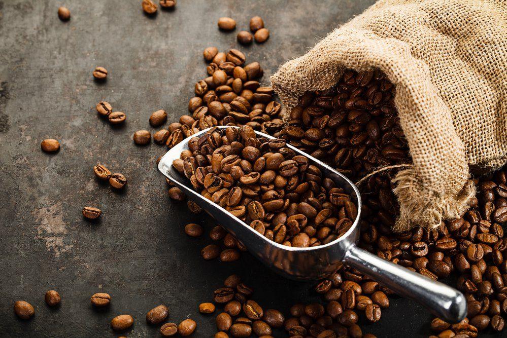 Dégustation de Cafés • Veille au Grain